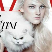 Magazin Katzen Cover