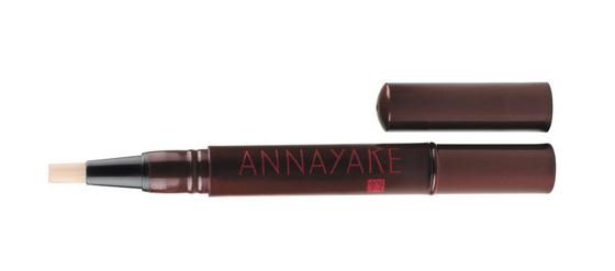 Annayake Concealer Pinceaux Lumière