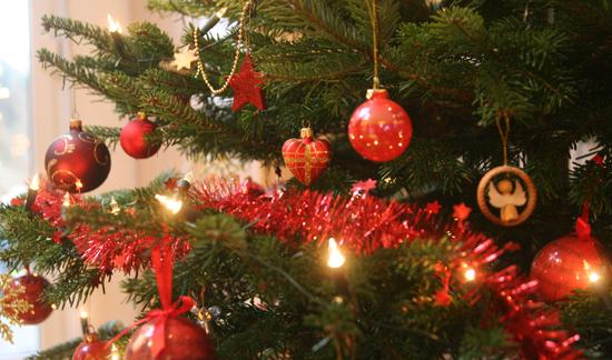Frohe Weihnachten 2012 4