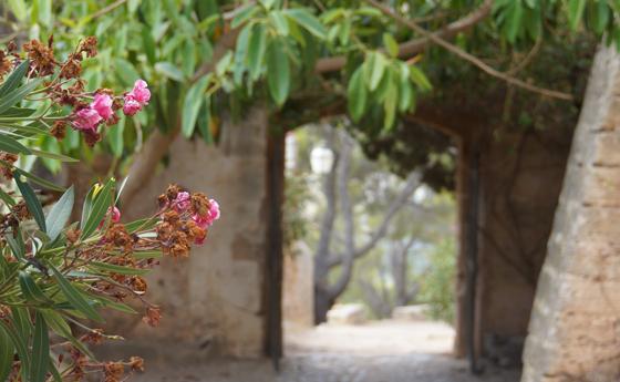 Wandern zum Puig de Maria Mallorca 09