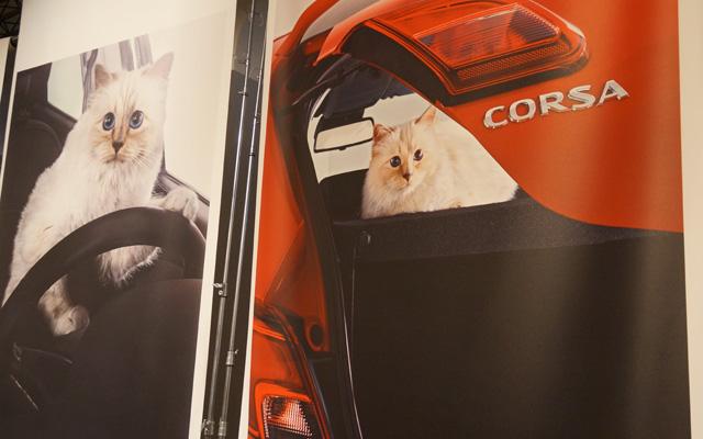 Corsa, Karl Lagerfeld & Choupette Ausstellung in Berlin 10
