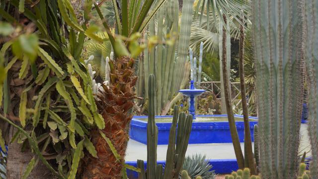 Yves Saint Laurent Garten Jardin Majorelle Marrakesch Marokko 05