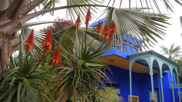 Yves Saint Laurent Garten Jardin Majorelle Marrakesch Marokko 06