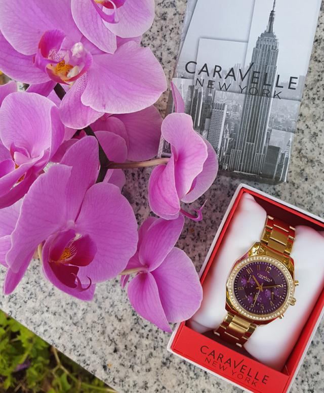 Purpur-strahlende Uhren von Caravelle New York 05