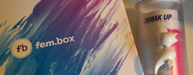 fembox-by-fernanda-brandao-oktober-2016-01
