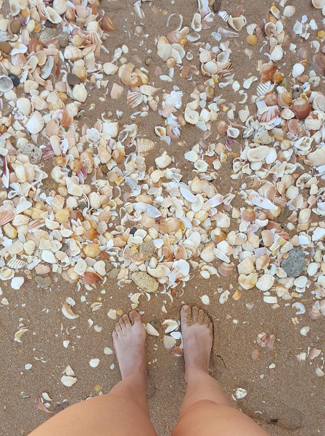 Praia do Castelo 04