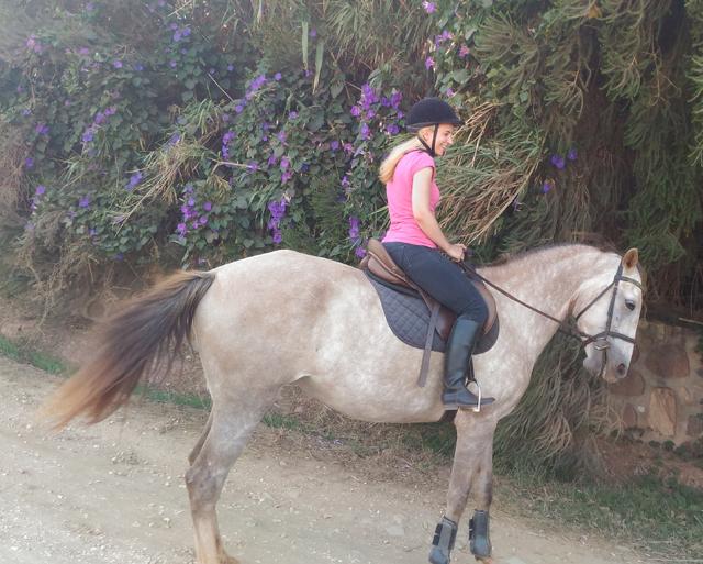 Reiten in der Algarve 01