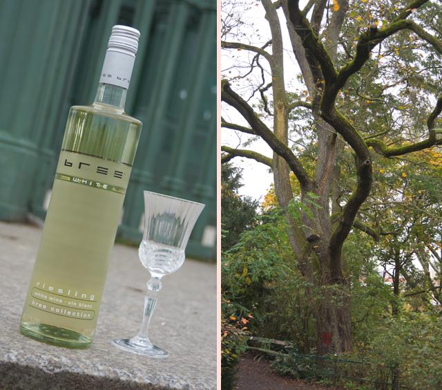 Herbst Momente in Berlin mit Bree Wein 09