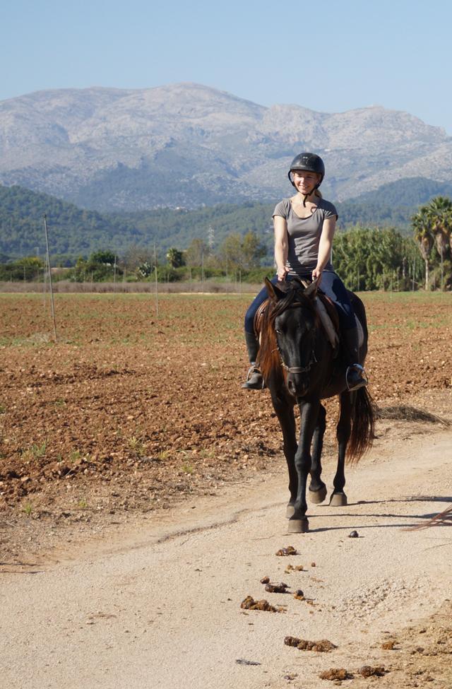 Urlaub Mallorca im November 2017 - 3
