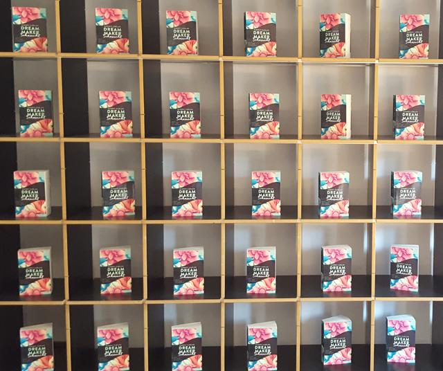 Buch Präsentation Dream Maker Audrey Carlan 01