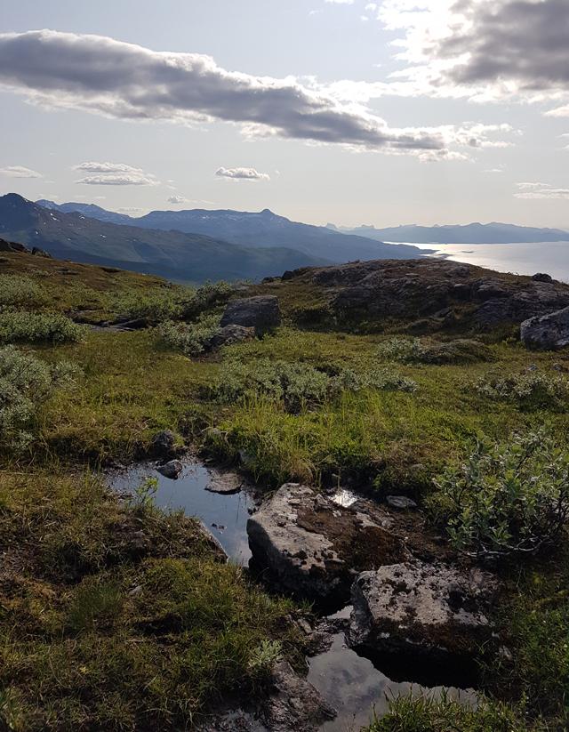 Narvikfjellet Norwegen 03