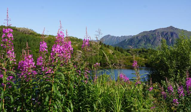 Norwegen 06